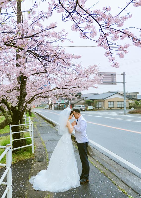 约一季樱花的浪漫